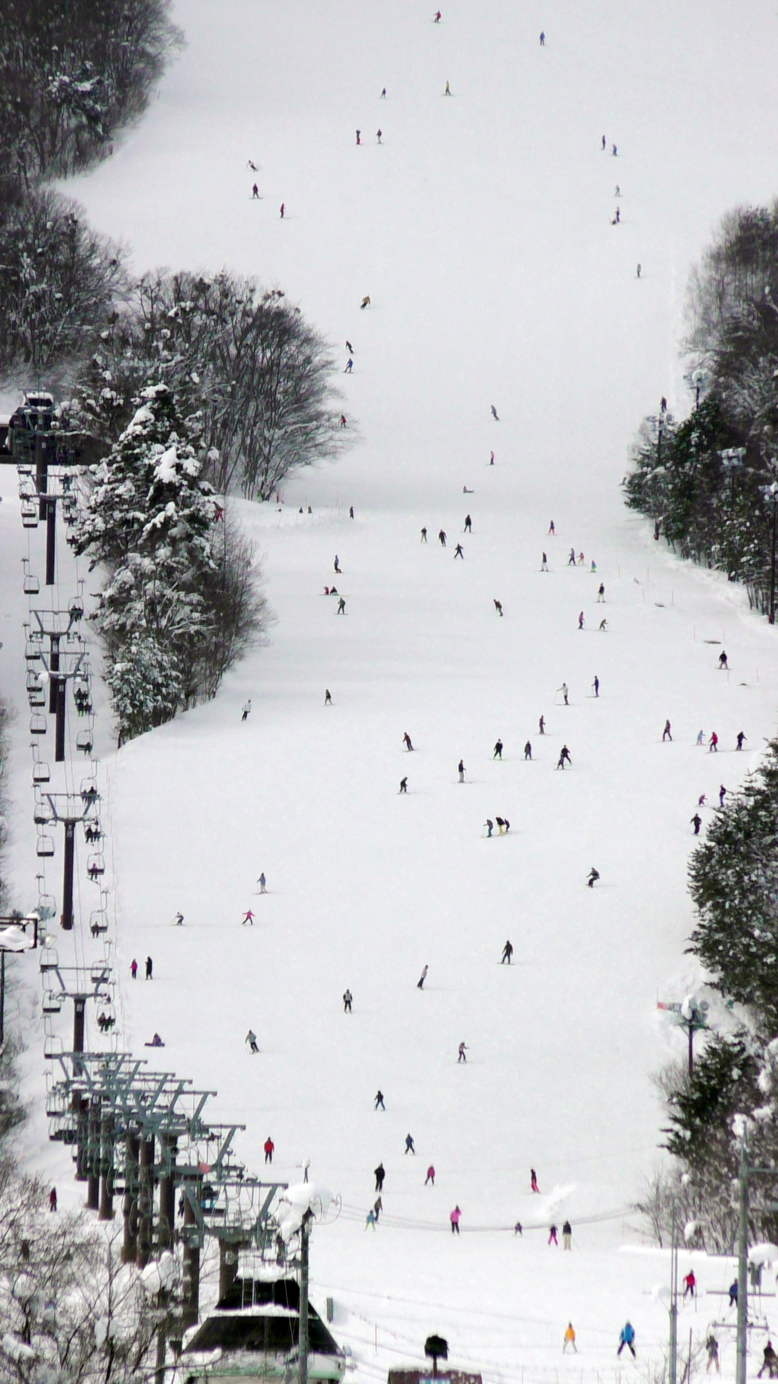 スキー場2017.1.22.様子S1450002